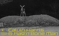 calvin harris rag n bone man giant