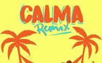 pedro cap farruko calma remix